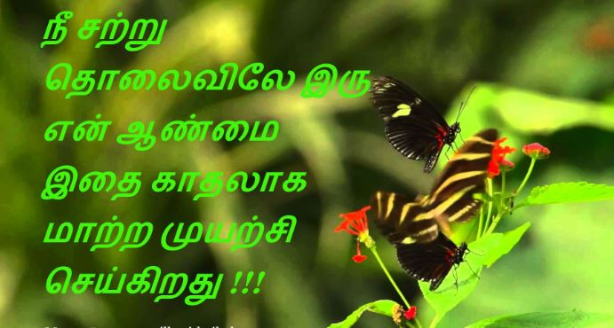 good morning kavithai in tamil best and latest