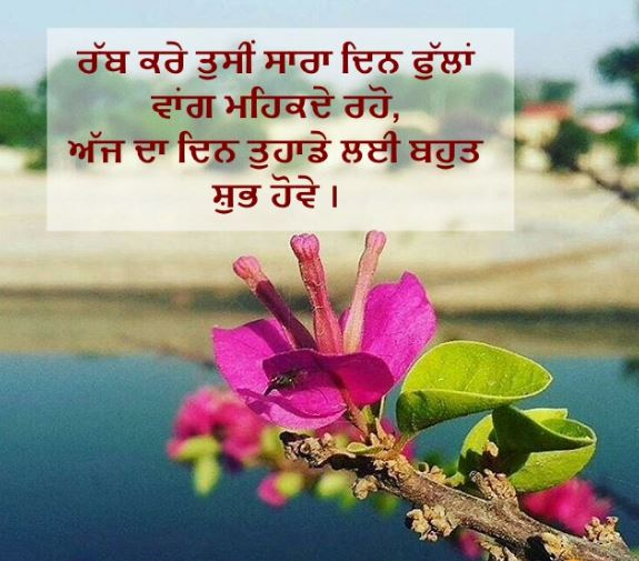 Download good morning images in punjabi for whatsapp and facebook | download hd