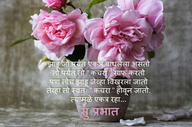 Best and Top Good Morning images in marathi wishes pics