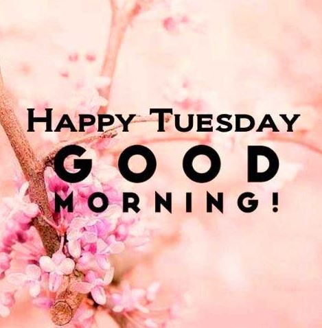 Good morning Tuesday images and gud morning Tuesday wishes