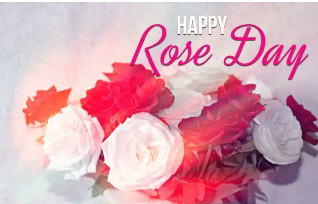 happy rose day in hindi images
