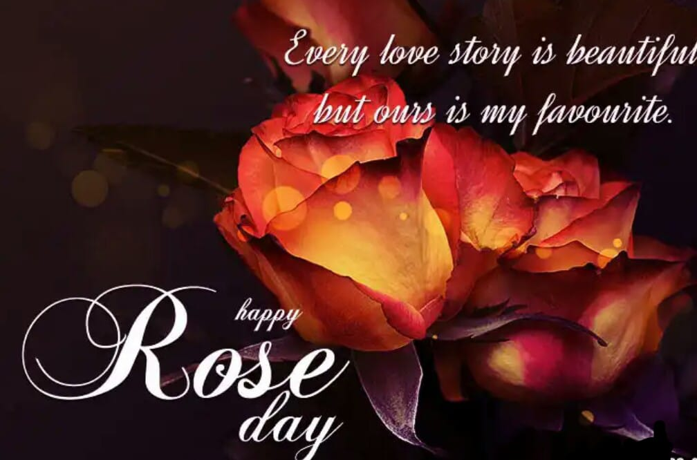 happy rose day wishes images in hindi