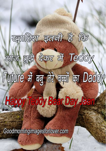 Happy teddy bear day shayari images in hindi wishes quotes