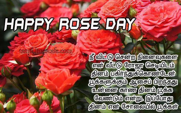 happy rose day images in tamil telugu wishes kavithai status greetings