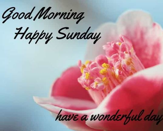 good morning with happy sunday images