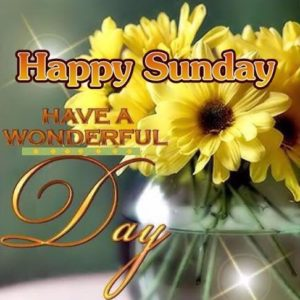 New sunday good morning images pics photo pictures download in hd