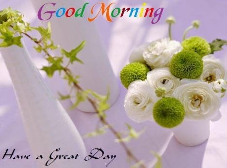 beautiful good morning images hd free download
