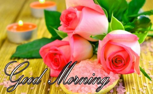 good morning wishes status for whatsapp