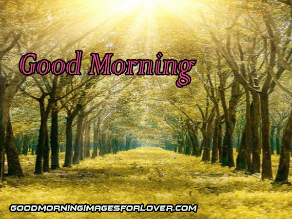 best good morning download in hd
