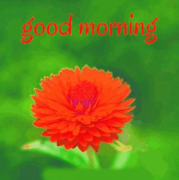 good morning blessing photo pics download in hd