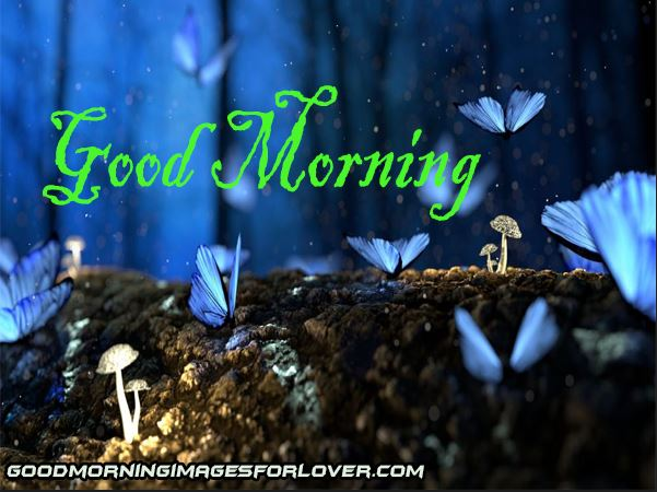 good morning images download in hd