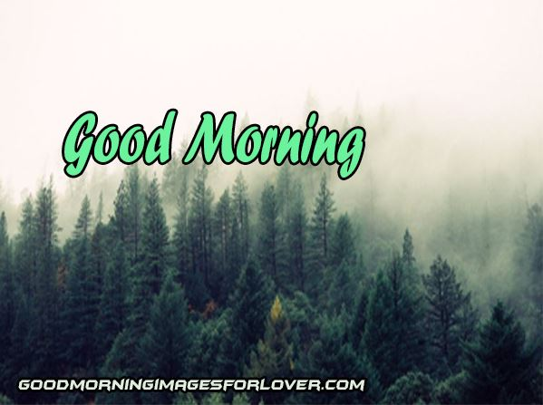 good morning nature pics for lover download in hd