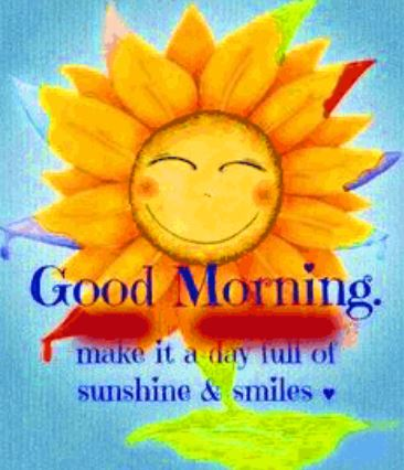 good morning sunflowers keep smile images pics download in hd