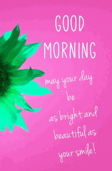 good morning sunflowers photo with quotes download in hd