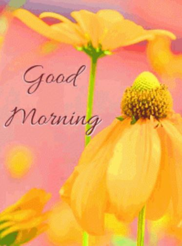 good morning top blessing download in hd pics