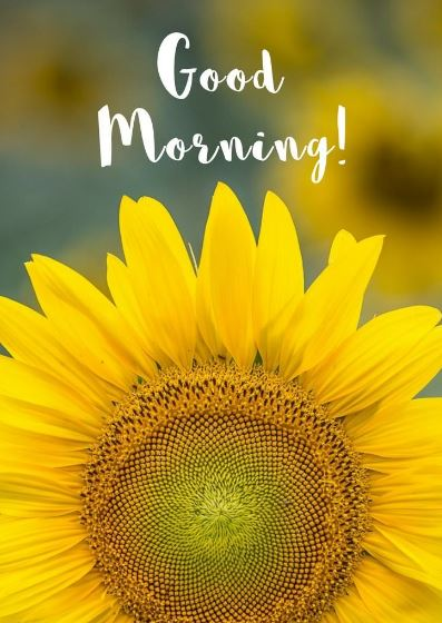 good morning toppest best photo download