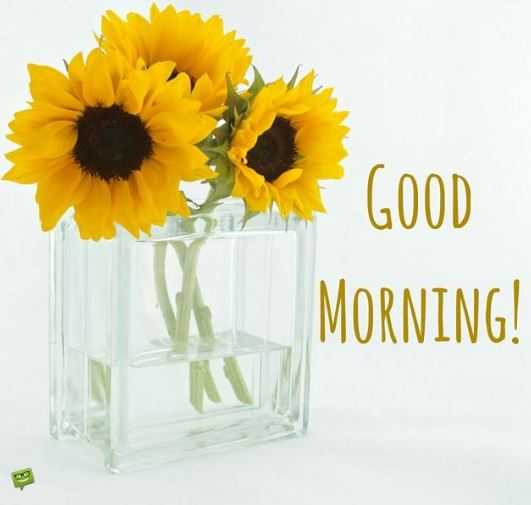 good morning toppest wishes for whatsapp and facebook