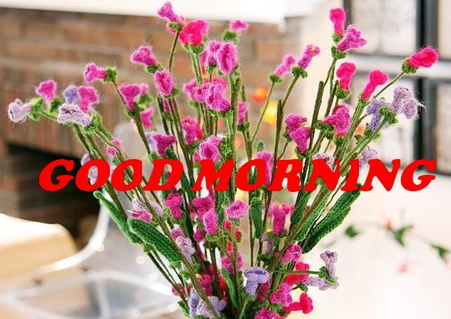 beautiful flowers good morning images