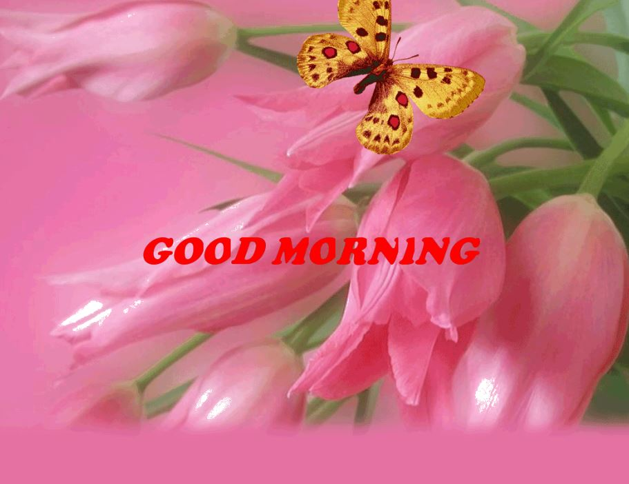 good morning beautiful bouquet images flowers